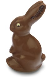 Milk chocolate Easter bunny 100g