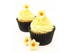 White chocolate flowers chocolate trading co chocolate flower decorations on cupcakes mightylinksfo