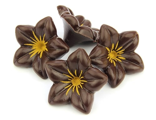 Images Of Chocolate Flowers Dark chocolate flowers
