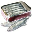 Tin of milk chocolate sardines